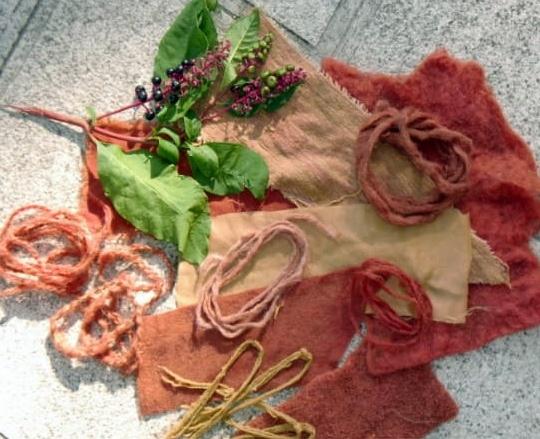 tintura naturale workshop san vito al tagliamento