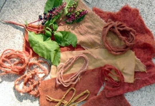 Workshop di Tintura naturale dei tessuti al Museo di San Vito